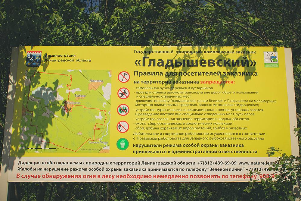Gladishevskiy_10.jpg